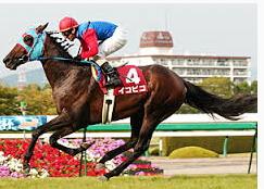 神戸新聞杯を活躍した名馬|イコ...